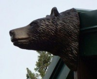 Black Bear Head on Roof Peak