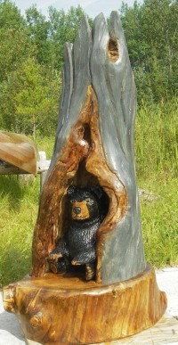 Hollow Tree Bear
