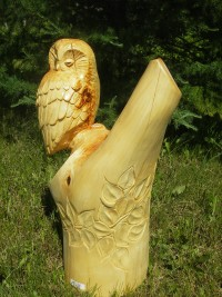 Linden Owl