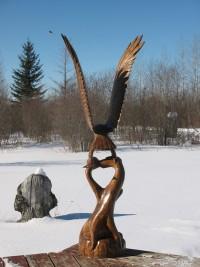 Landing Eagle On Root