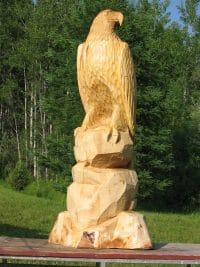 Sitting Eagle On Rock